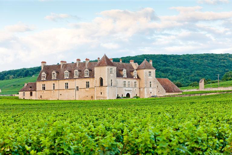 Schloss Clos Blanc De Vougeot Castle, Burgund, Frankreich mit Spätburgunder Weinbergen im Vordergrund