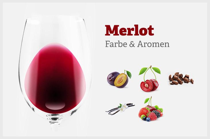 Farbe und Aromenprofil des Merlot. Pflaume, Schwarzkirsche, Schokolade, Beerenfrüchte und Vanille